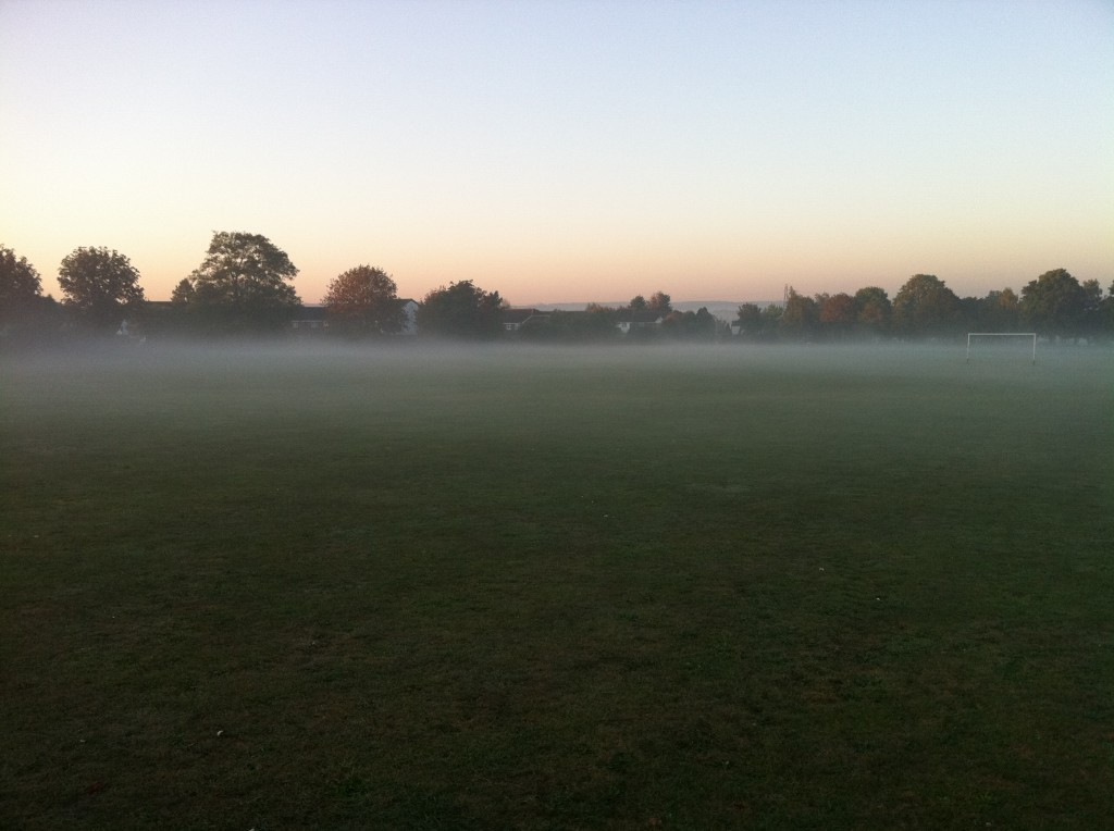 Low lying fog over the grass