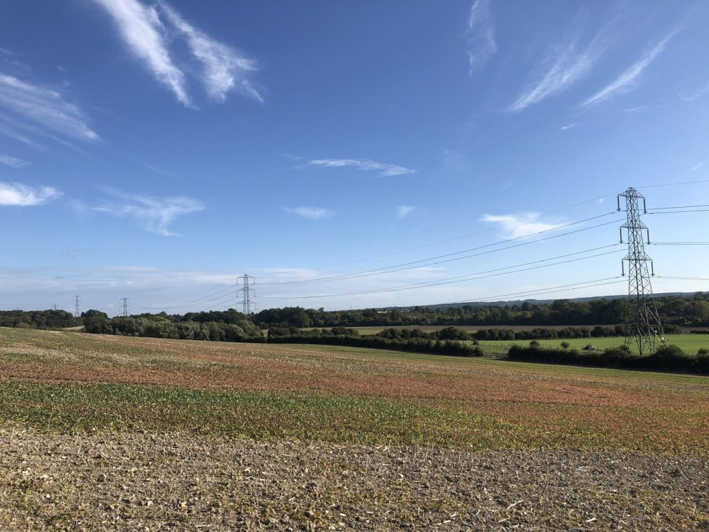 Sunny Lower North Downs
