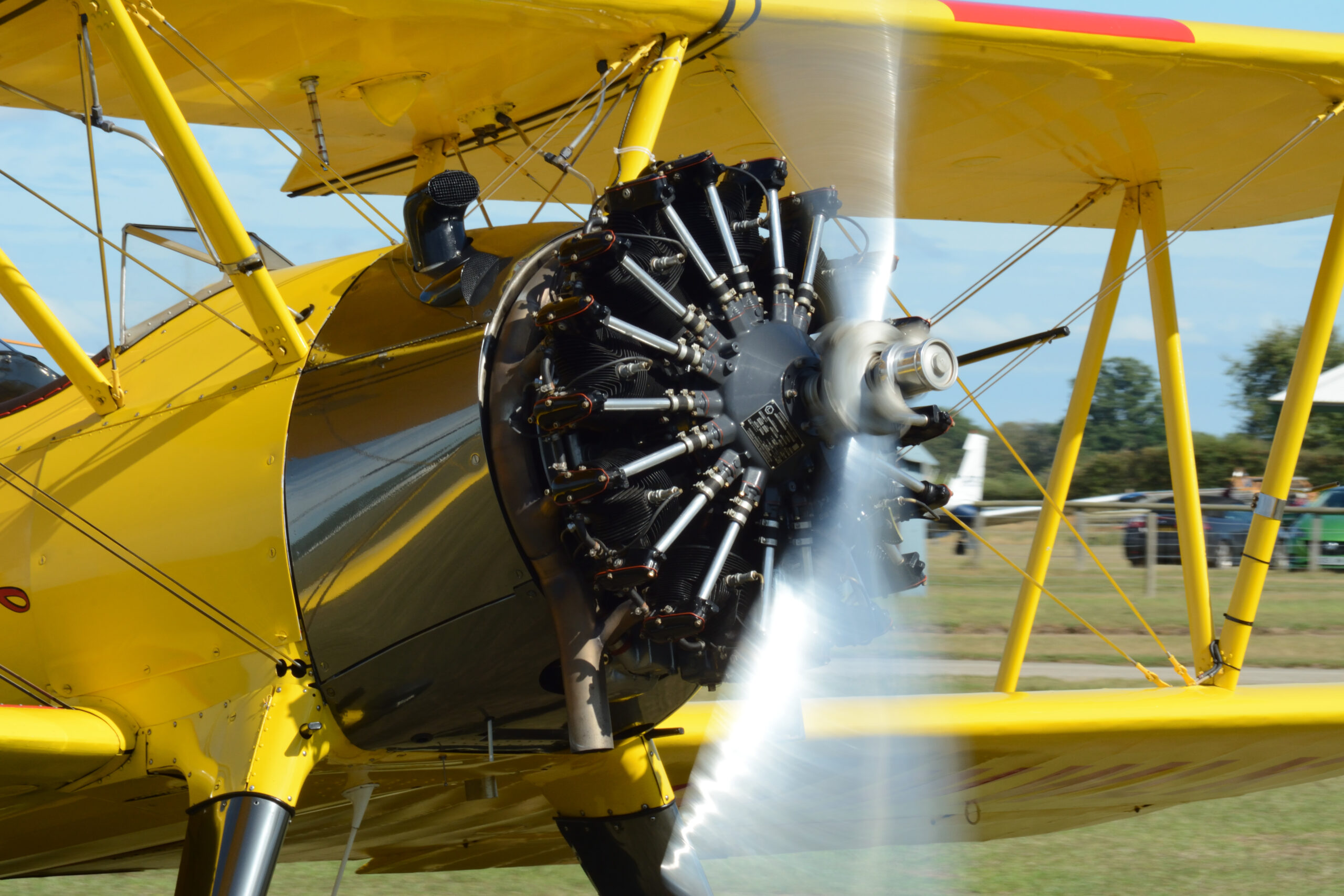 Wing Walk Stearman