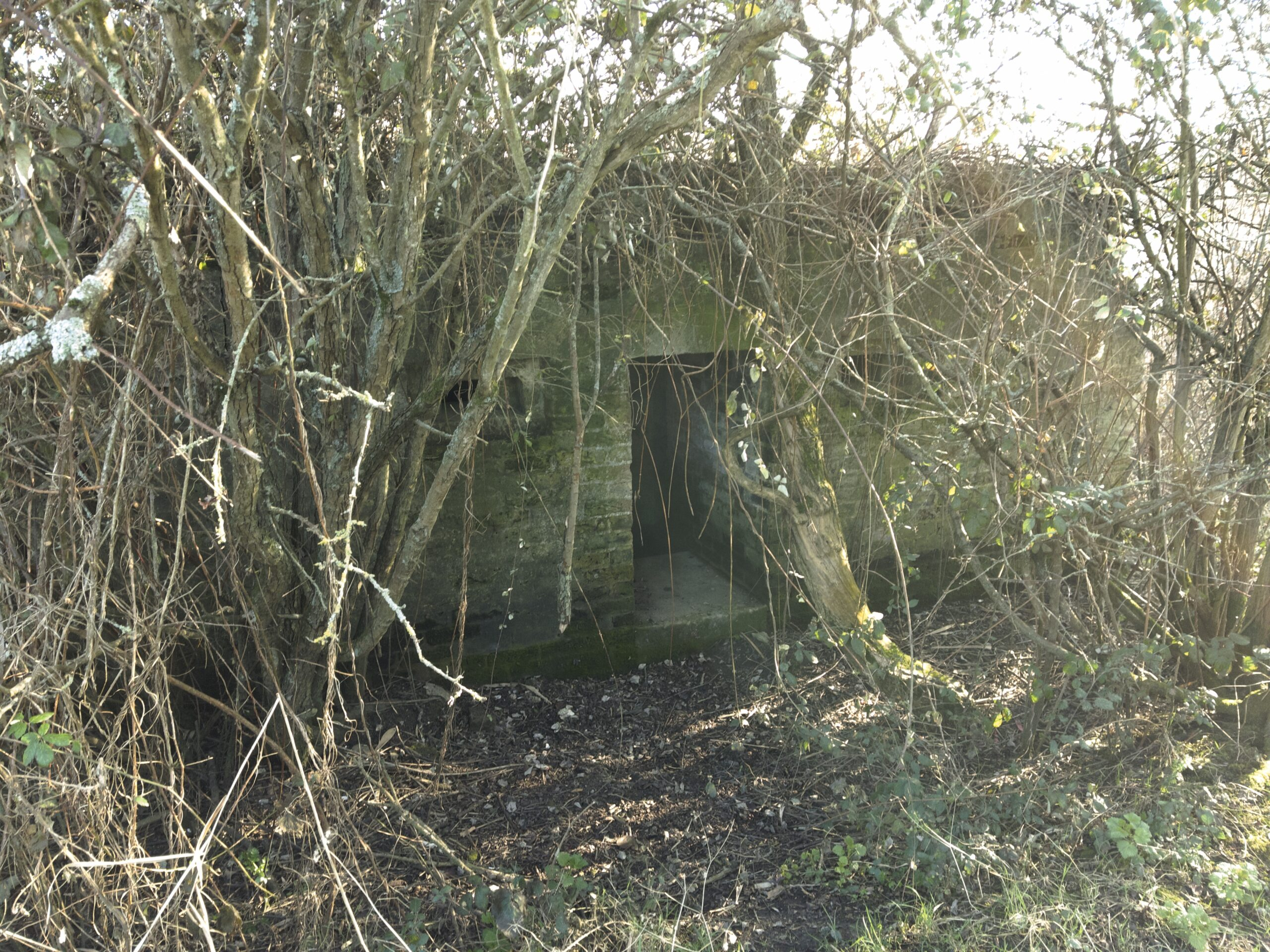 Brooklands Lake Pillbox